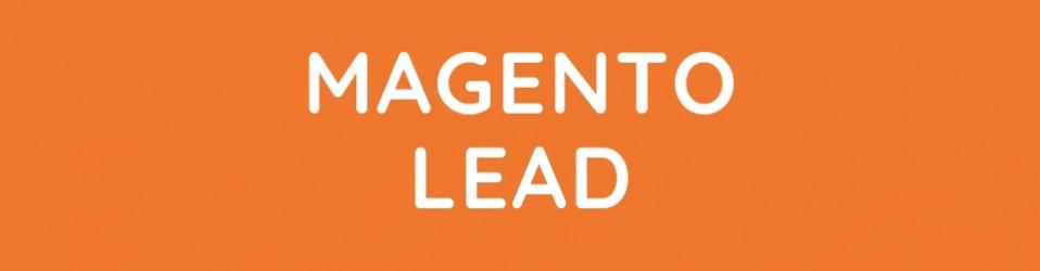 Magento Team Lead
