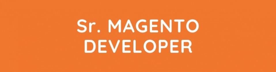 Senior Magento Developer
