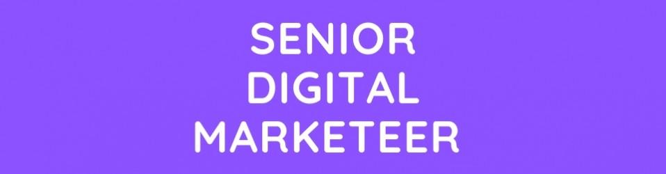 Senior Digital Marketer